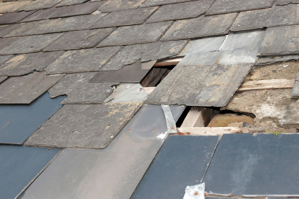 What to Look for During Roof Inspections
